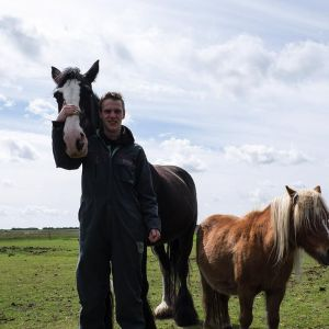 Paard - Natuur Boerderij Plassendaal